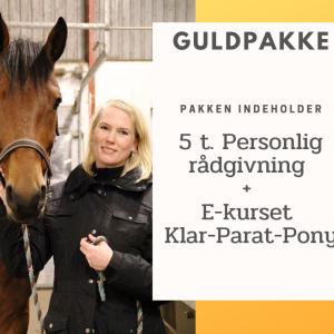rådgivning i ponykøb